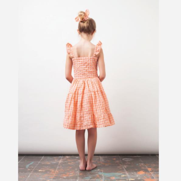 Checked Print Dress LS2png